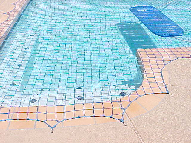 pool with a safety net over it